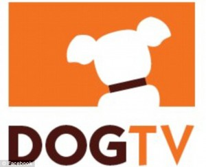 Logo de Dog TV
